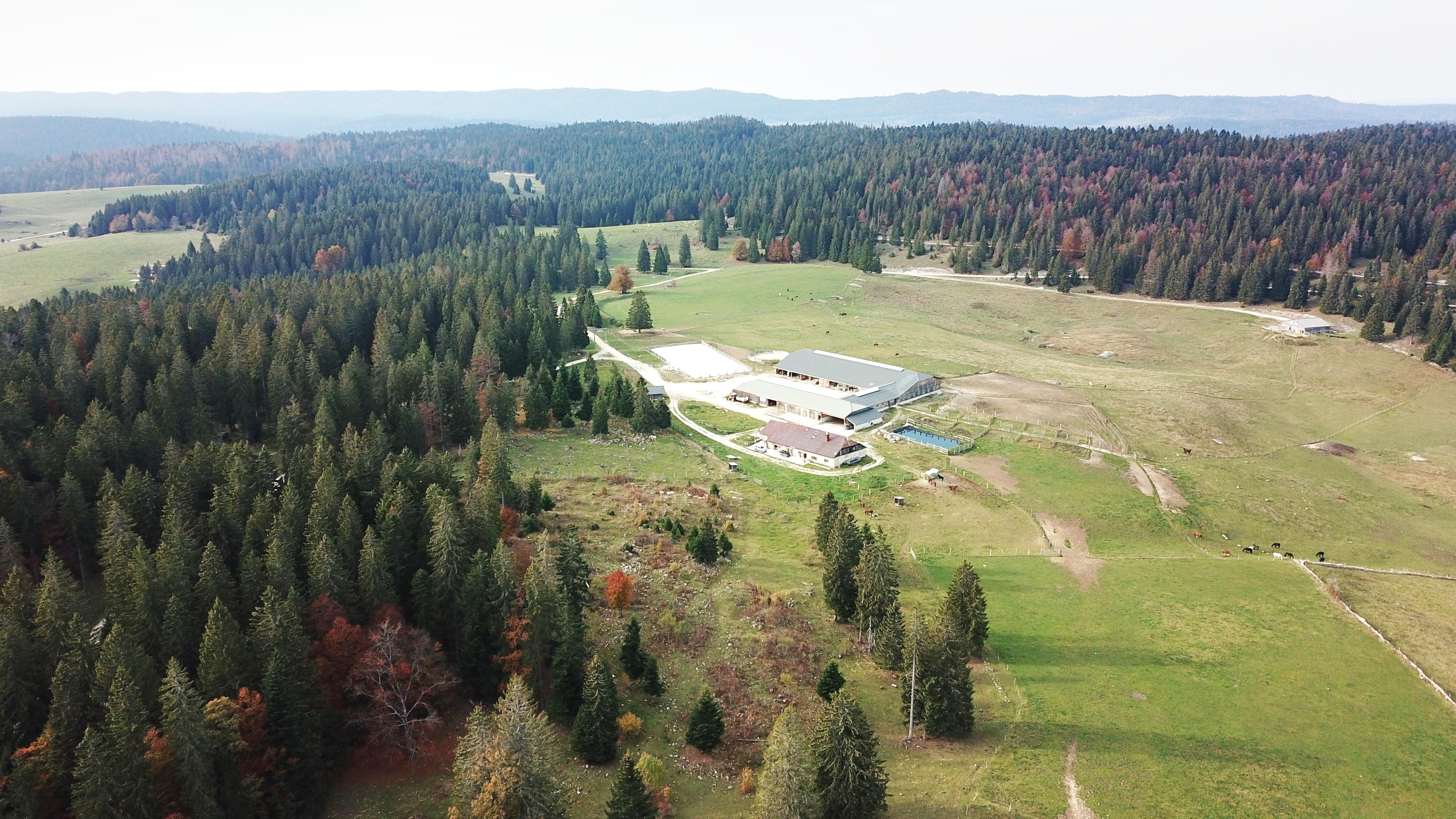Domaine équestre et forestier sur 25 ha proche Suisse (25)