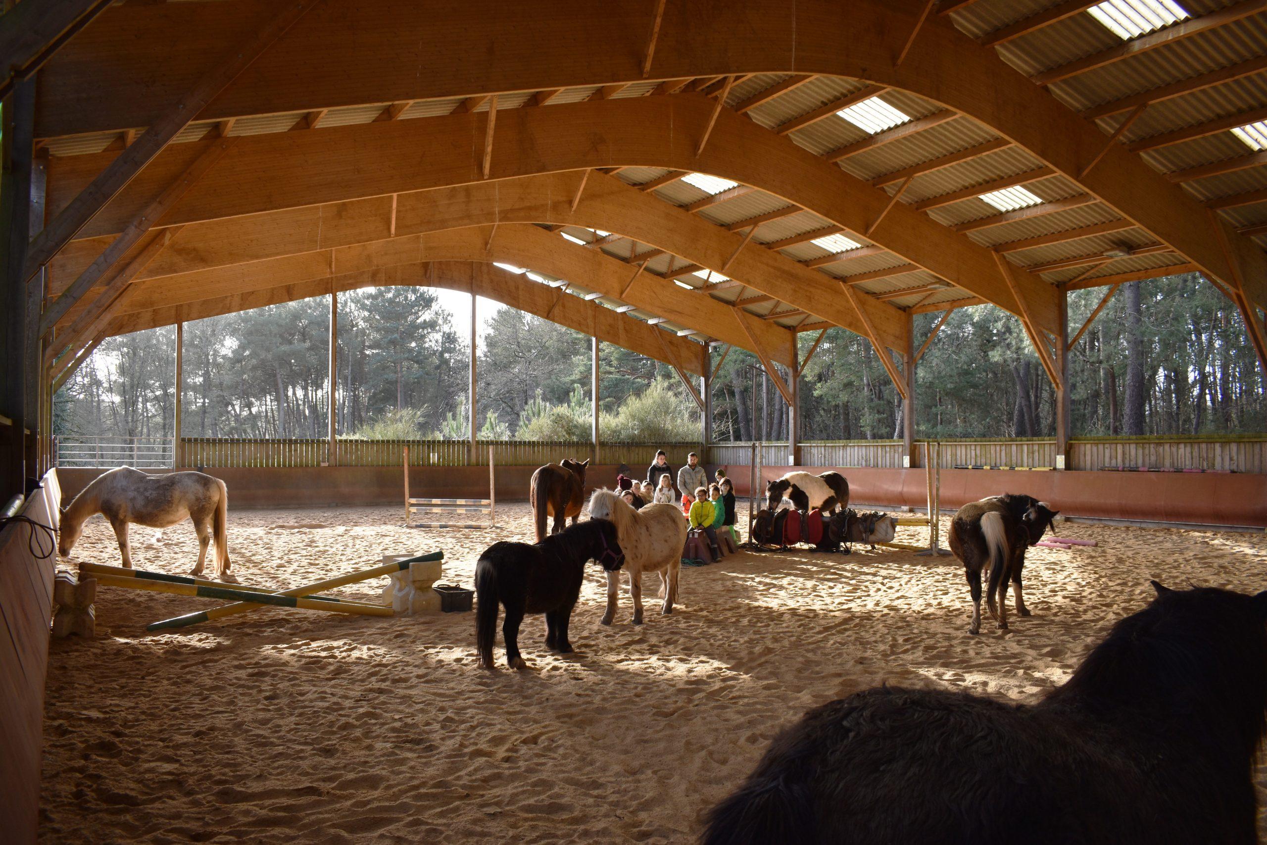 Centre équestre sur 13 ha – Secteur de Ploërmel (56)