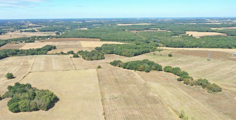 Terrain agricole de 47,8 ha – Le Blanc (36)