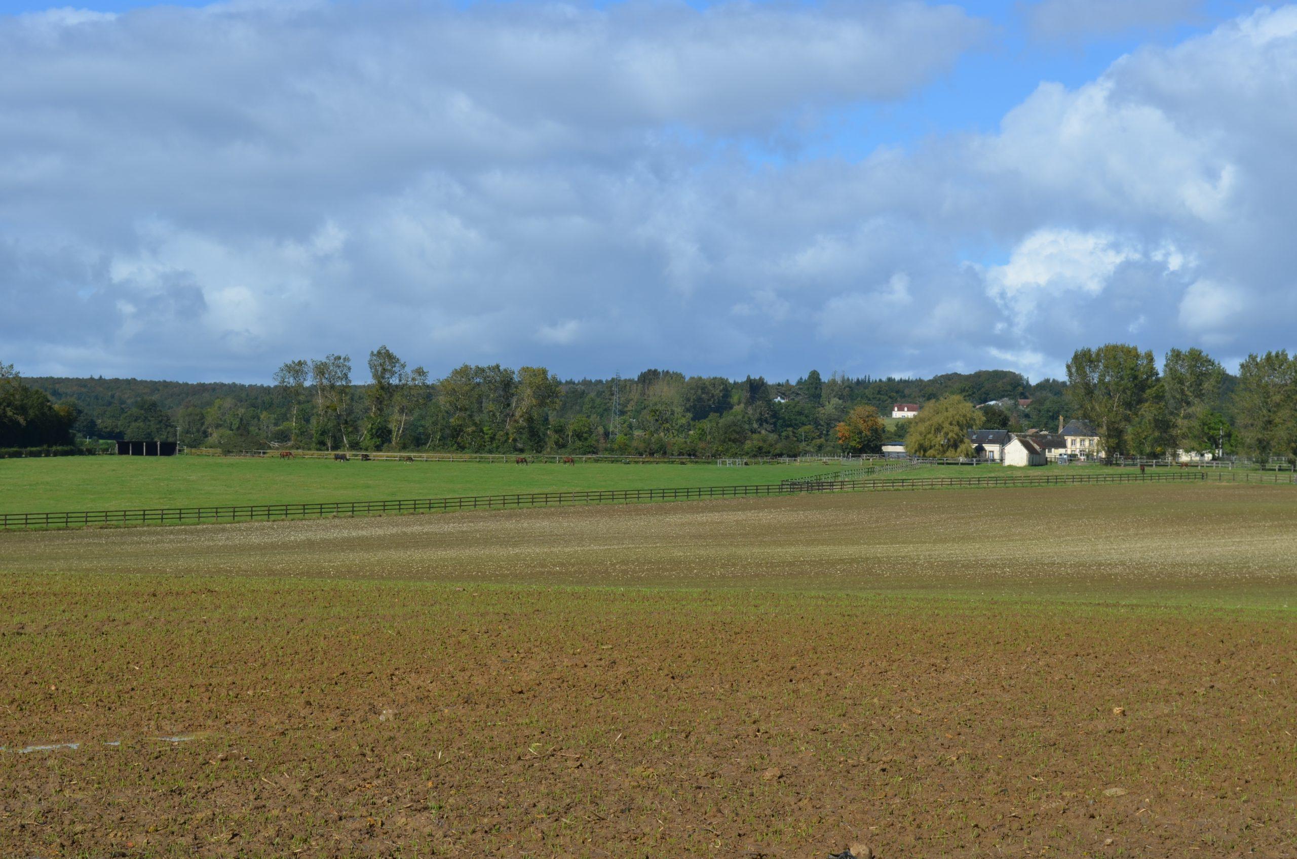 Haras – 39 ha – Normandie – Orne( 61) – Région de L'Aigle